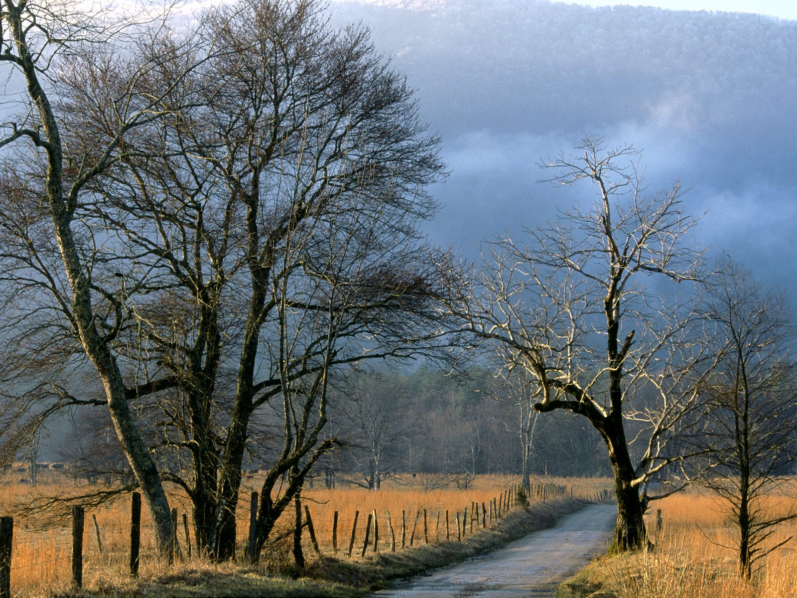Sparks Lane, Cades Cove, Great Smoky Mountains N